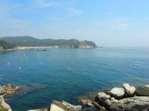 Boies Ecològiques a Cala S'Alguer